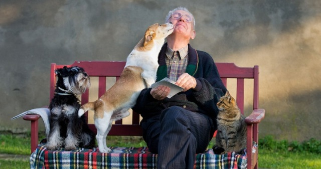 perros-personas-mayores.jpg